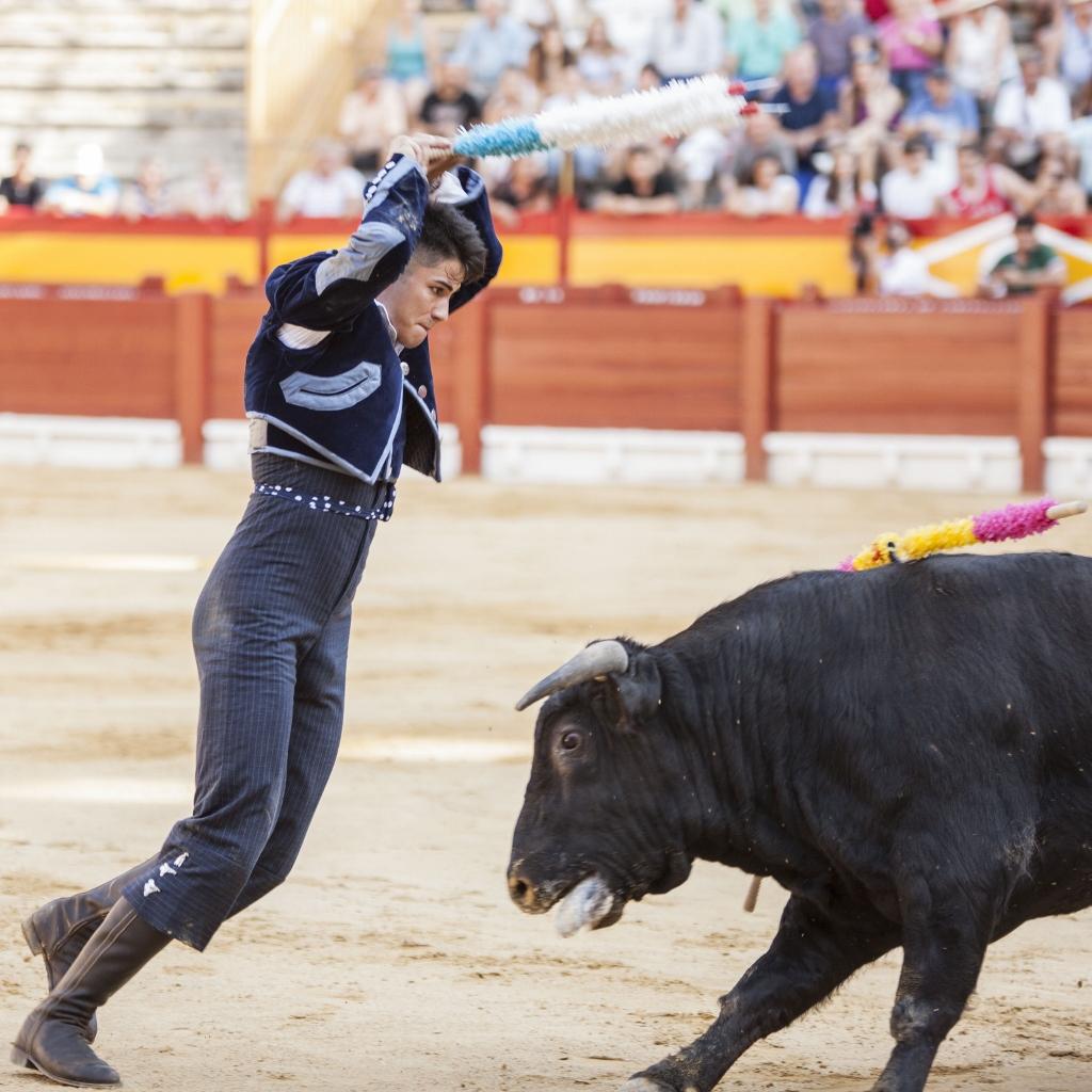 Alicante 19/06/2017