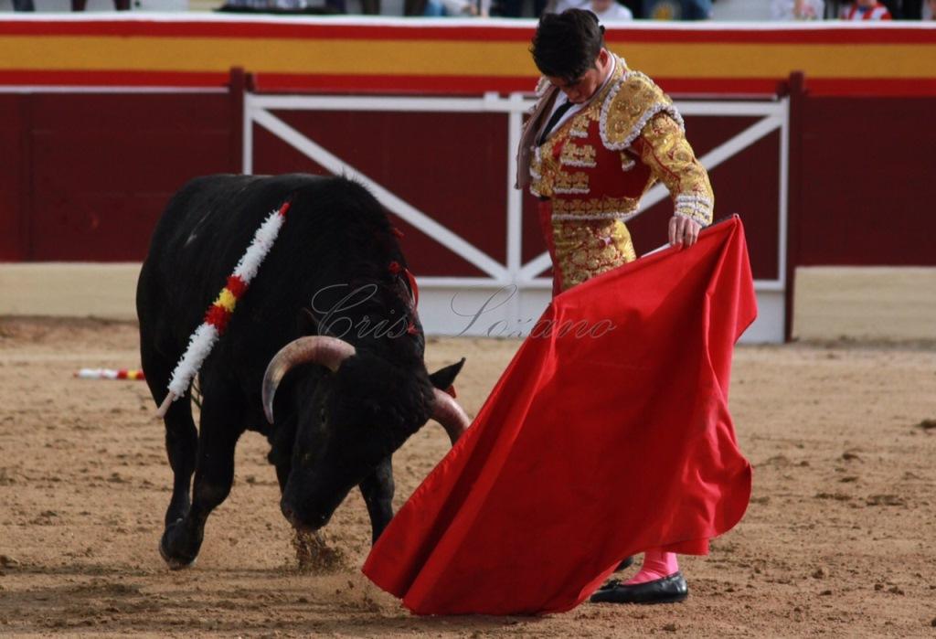Borja Ximelis - Debut de novillero