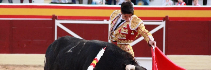 Borja Ximelis - Lucillos