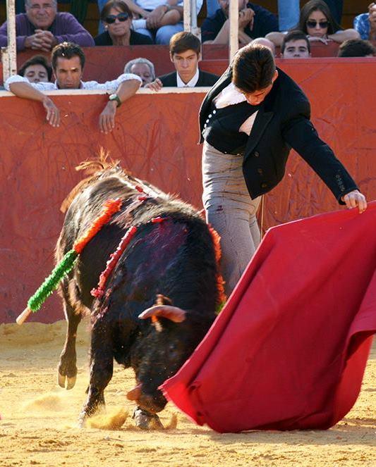 Borja Ximelis Torero