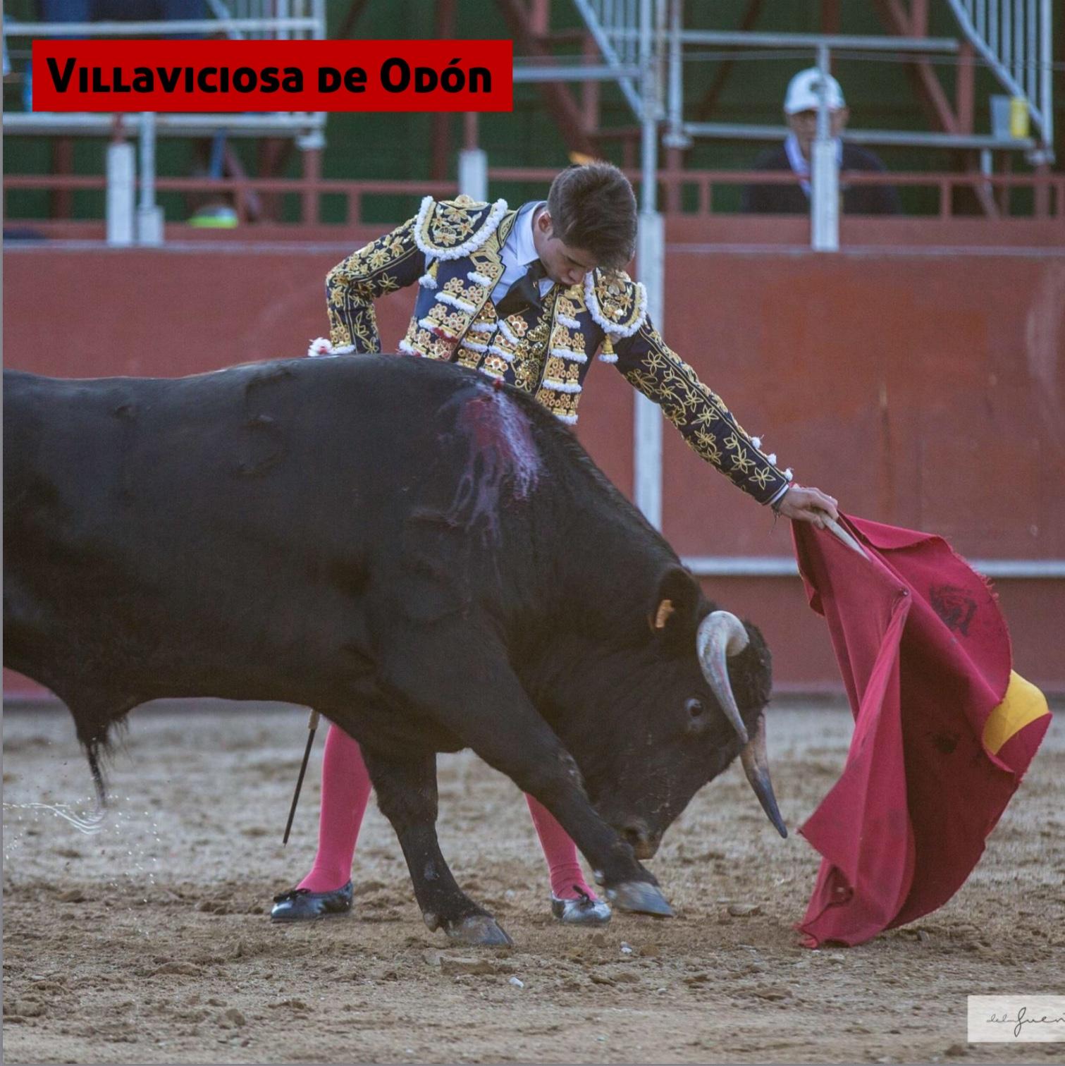 Villaviciosa de Odón 19/09/2017